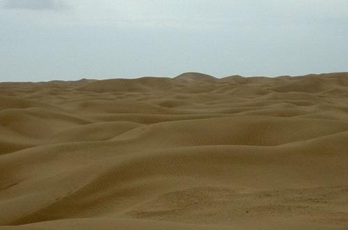 塔里木盆地 塔里木盆地和准噶尔盆地是新疆