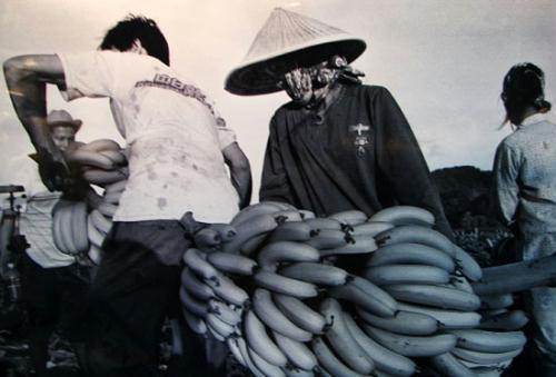 老照片:海南故事