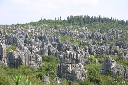 世界噶斯特地貌的精华——云南石林图片